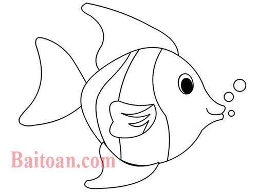 Đố các bạn biết có bao nhiêu con cá chưa cắt đầu và đuôi?