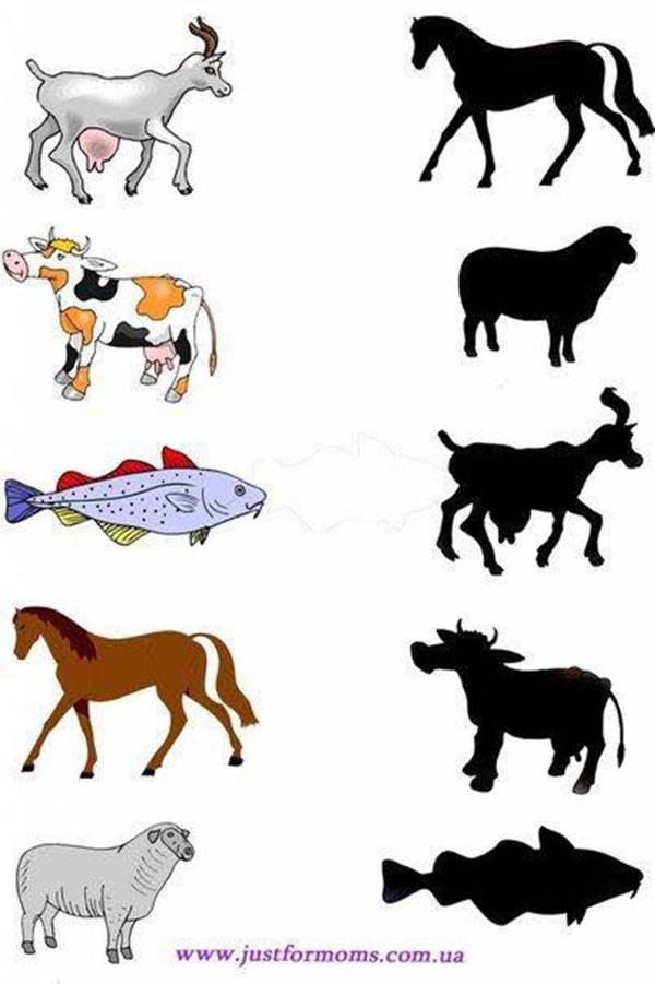 Bài tập nối hình với bóng cho các bé-5