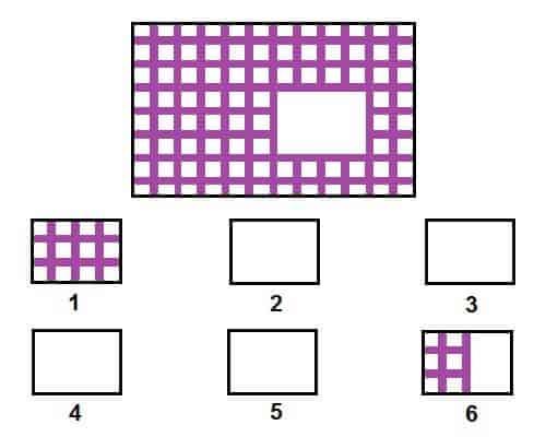 12 bài tập chọn hình ảnh phát triển IQ cho trẻ 4-5 tuổi-5