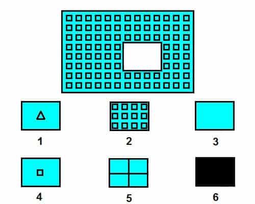 12 bài tập chọn hình ảnh phát triển IQ cho trẻ 4-5 tuổi-6