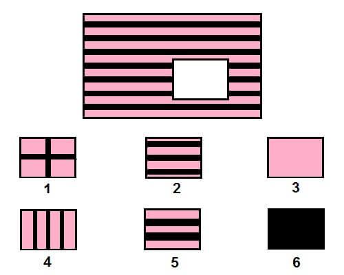 12 bài tập chọn hình ảnh phát triển IQ cho trẻ 4-5 tuổi-8